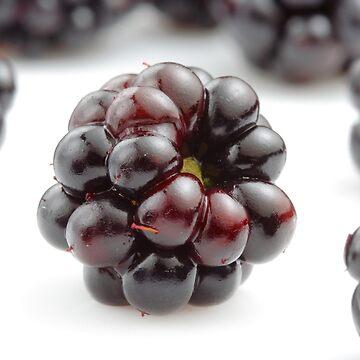 Blackberries by avuc