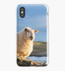 Donegal Sheep iPhone Case/Skin