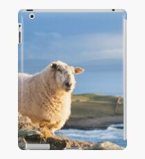 Donegal Sheep iPad Case/Skin