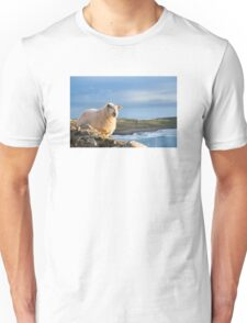 Donegal Sheep Unisex T-Shirt