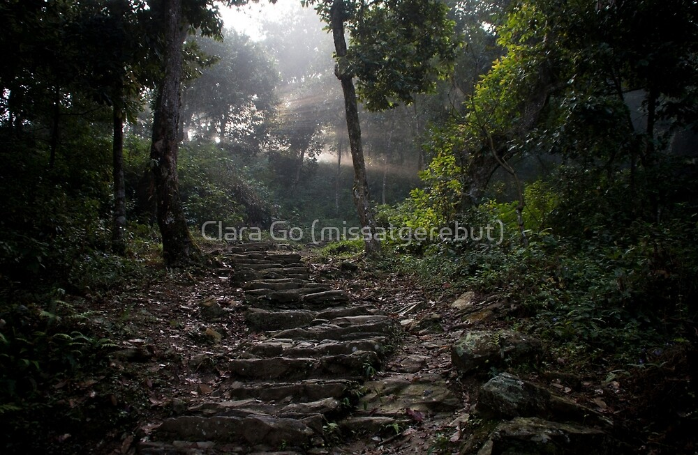 Stairs to the mountain  by Clara Go (missatgerebut)