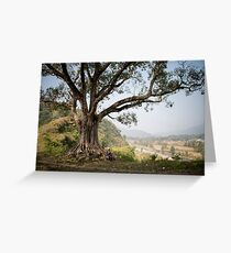 Nepali man sitting under a tree Greeting Card