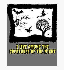 creatures of the night laura branigan pop music halloween scary owl bat crow witch 80s illustration dark Photographic Print
