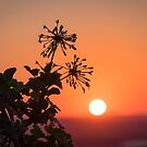sunset in crete by milena boeva