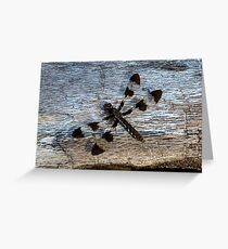 Dragonfly on Dead Log Greeting Card