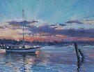 Hastings River Sunset by Terri Maddock