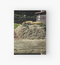 Brothers Hardcover Journal
