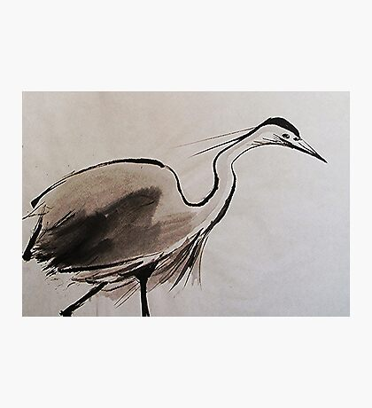 Japanese Crane Photographic Print