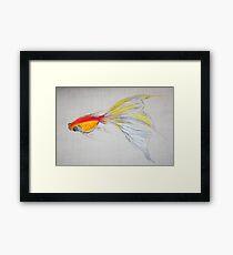 Goldfish Pond (close up #1) Framed Print