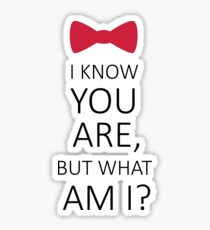 I Know You Are But What Am I? Sticker