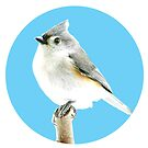 my little titmouse by little1sandra
