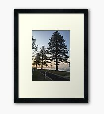 Trees! Framed Print