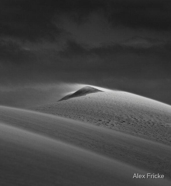 A Witness to Wind  by Alex Fricke