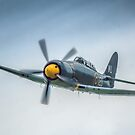 Two Seat Sea Fury 2014 by SWEEPER