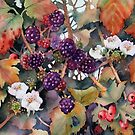 Blackberries and Hawthorn by Ann Mortimer