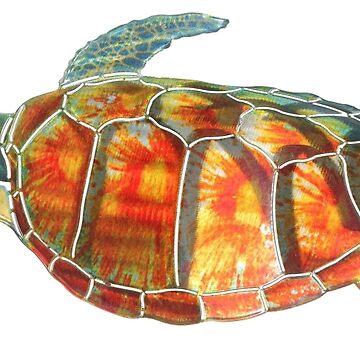Turtle by ishanbg