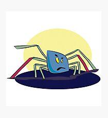 Kleine Spinne 2 Photographic Print