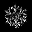 Snowflake vector - Gardener's dream black version by Alexey Kljatov