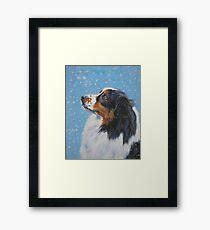 Australian Shepherd Fine Art Painting Framed Print