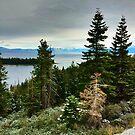 Lake Tahoe by Robin Black