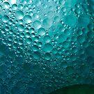 Surface Bubbles by Robyn Selem