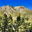 South Lake Tahoe by Robin Black
