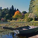 Boating on the Lily  by mikebov