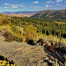 Nevada canyon overlook by Robin Black