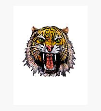 Tekken - Heihachi Tiger Photographic Print