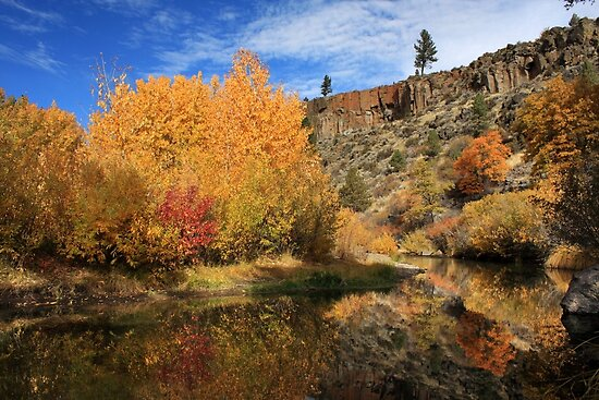 Autumn Reflections In The Susan River Canyon by James Eddy