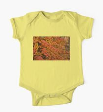 Multicolored Miniatures -  Kids Clothes