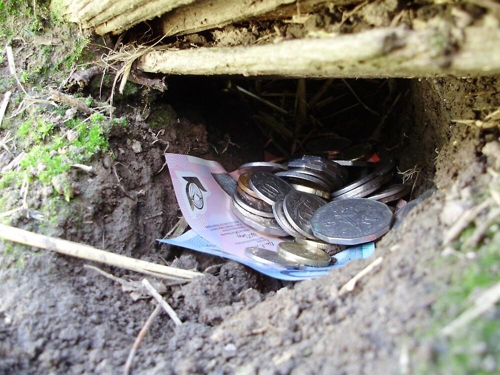 Money Down a Rat Hole by Tim Serong