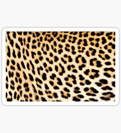 Lodge décor - Cheetah print Sticker