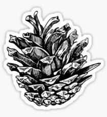 Pine cone Sticker