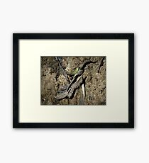 A Small Representative Part Of The Mineshaft Track Framed Print