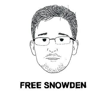 Free Snowden by Salicath