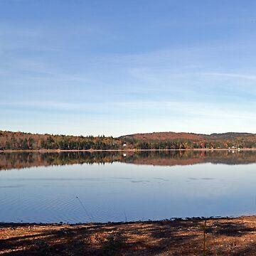 Lake Reflection by MarthaMedford