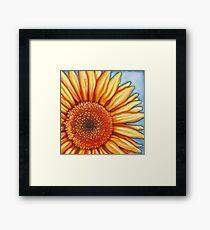 """""""A Little Sunshine"""" Framed Print"""