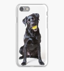 Baxter with ball (full length version) iPhone Case/Skin