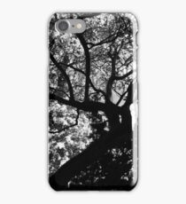 Chapel Row Tree If you like, please purchase an item, thanks iPhone Case/Skin