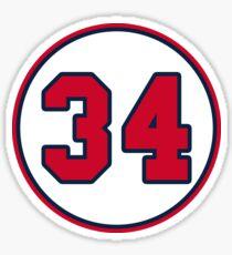 David Ortiz Big Papi 34 Sticker