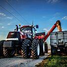 Harvest Season by Steve Baird