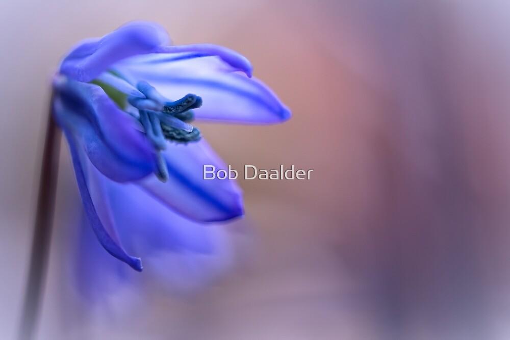 Blooming Blue... by Bob Daalder