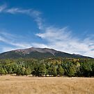 Humphreys Peak from Hart Prairie by Jeff Goulden