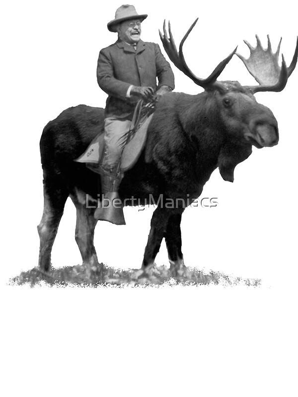 Quot Teddy Roosevelt Riding A Bull Moose Quot Stickers By