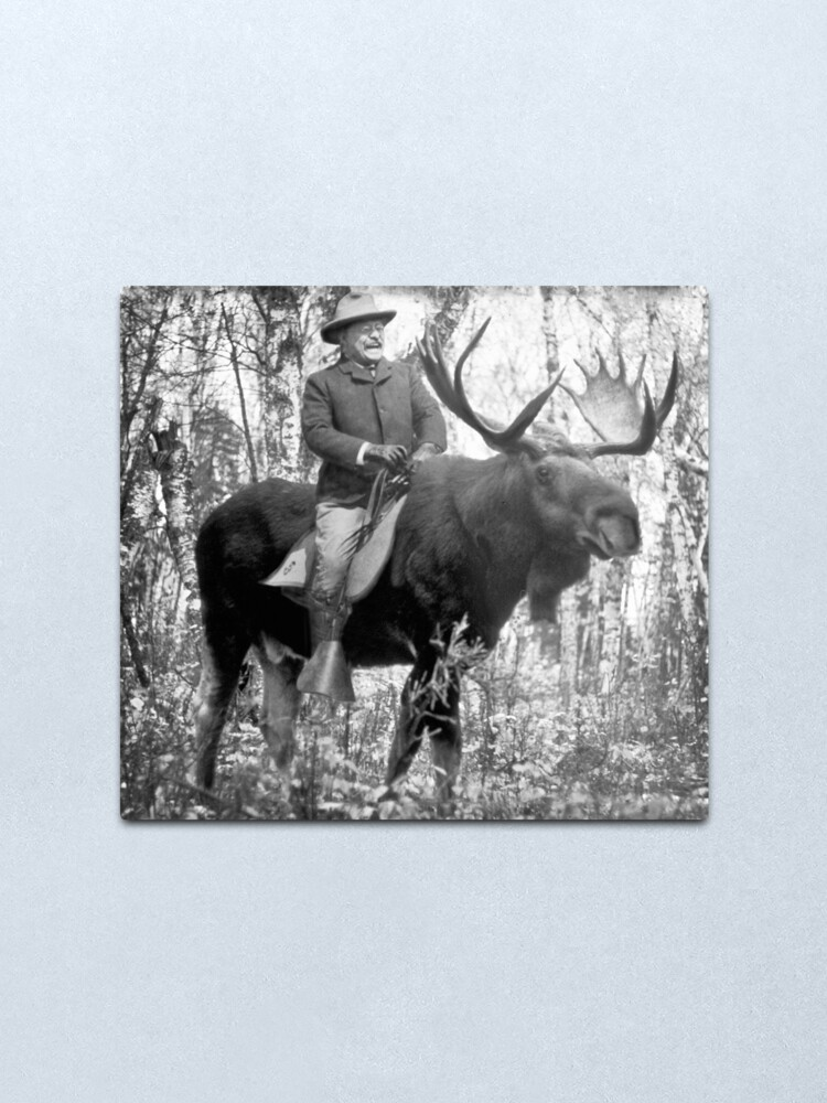 Alternate view of Teddy Roosevelt Riding A Bull Moose Metal Print