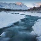 Quill Creek, Yukon by Marty Samis