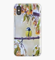 great titmouse on a snow branch iPhone Case/Skin