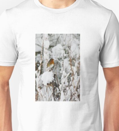 Robin red breast winter design for Christmas  T-Shirt