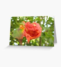 Juicy Fruit Greeting Card